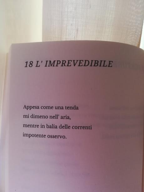 """L'imprevedibile, tratto da """"Introspettiva"""""""